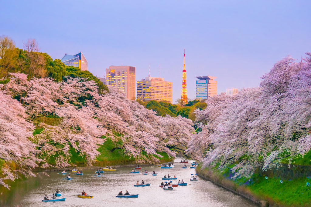5 Luxury Spring Break Destinations 2018: Tokyo, Japan: Under the Aroma of Cherry Trees. SkyLux - Discounted Business and First Class Flights.